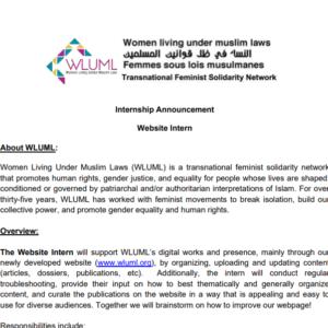 Internship Announcement:  Website Intern